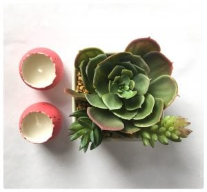 Faux Succulent Plant and Two Sweet Easter Egg Candles