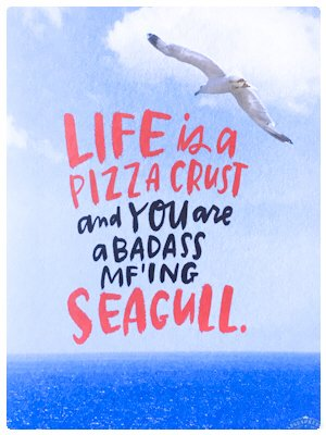 You are a Seagull!!